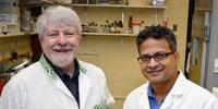 Researchers Setting Up So-called Dream Team to Research, Develop Nanovaccines