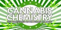 Cannabis Chemistry: How Scientists Test Pot for Potency and Safety (video)