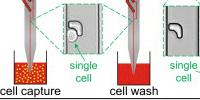 Moving Single Cells Around–Accurately and Cheaply