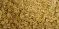 Oat Breakfast Cereals may Contain a Common Mold-Related Toxin