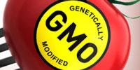 Consumers Don't View GMO Labels as Negative 'Warnings'