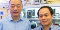 New Molecular Butterflies Help Advance Energy Research