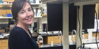 Researcher Uncovers Influence of Microorganisms on Soil Carbon Storage