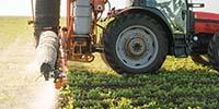 Protecting Foods from Pesticides