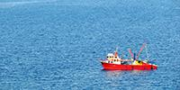 Banning Transshipment At-Sea Necessary to Curb Illegal Fishing, Researchers Conclude