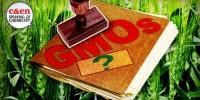 How GMOs Are, or Are Not, Regulated