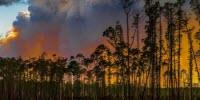 Smoke from Wildfires Can Have Lasting Climate Impact