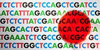 Novel Sequencing Approach Seeks to Detect Cancer's Genomic Alterations