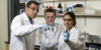 Researchers Awarded IGEM Grant to Combat Potato Rot