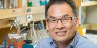 Key Factor Identified in Gene Silencing