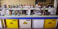 Laboratory Safety Quiz