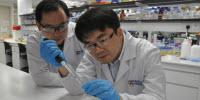 Scientists Combine Antimalarial Drug with Light-Sensitive Molecules for Promising Treatment of Cancer