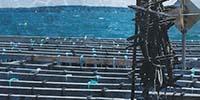 Industry-University Partnership Turns Aquaculture Farm into a Giant Lab