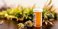 Medical Marijuana for Children with Cancer? What Providers Think
