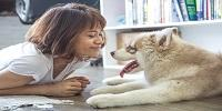 Emotional Bond Between Humans and Dogs Dates Back 14,000 Years