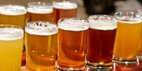 A Brewer's Tale of Proteins and Beer
