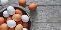 Study Paves Way for Healthier and More Robust Eggs