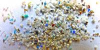 Are Microplastics in the Environment Truly Harmful?