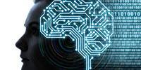Unlocking the Secret of How the Brain Encodes Speech