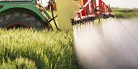 Leading Researchers Call for a Ban on Widely Used Insecticides