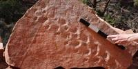 Tiny Footprints, Big Discovery: Reptile Tracks Oldest Ever Found in Grand Canyon