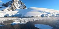 When 'Alien' Insects Attack Antarctica