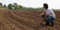 Farmers, Food Companies Hit the Dirt to Improve Soil Health