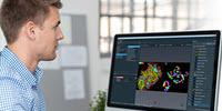 Thermo Scientific Avizo2D Speeds Up Image Analysis with Automated, Reproducible Workflows
