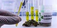 European Medical Cannabis Company Expands Its Research Collaboration with Imperial College London