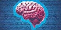 Major Epilepsy Study Offers Much-Needed Answers on 3 Lifesaving Seizure Drugs