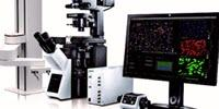 The Olympus scanR High-Content Screening Station Rapidly Acquires Quantitative Data from Cell-Based Assays