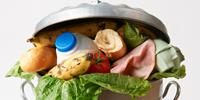 Study Suggests US Households Waste Nearly a Third of the Food They Acquire